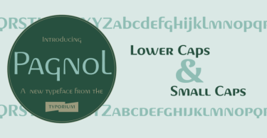 Pagnol Super Family [20 Fonts] | The Fonts Master