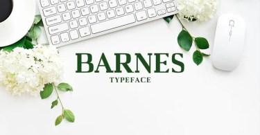Creativetacos Barnes [7 Fonts] | The Fonts Master