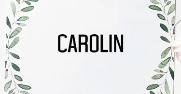 Creativetacos Carolin [4 Fonts] | The Fonts Master