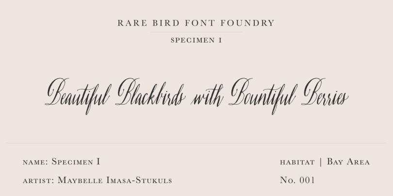 Rare Bird Specimen I Super Family [1 Font] | The Fonts Master