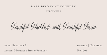 Rare Bird Specimen I Super Family [1 Font] | The Fonts Master