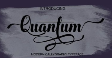 Quantum [1 Font] | The Fonts Master