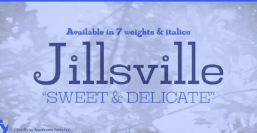 Jillsville [14 Fonts] | The Fonts Master