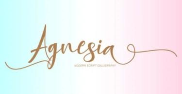 Agnesia [1 Font]
