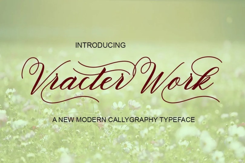 Vracter Work [2 Fonts] | The Fonts Master