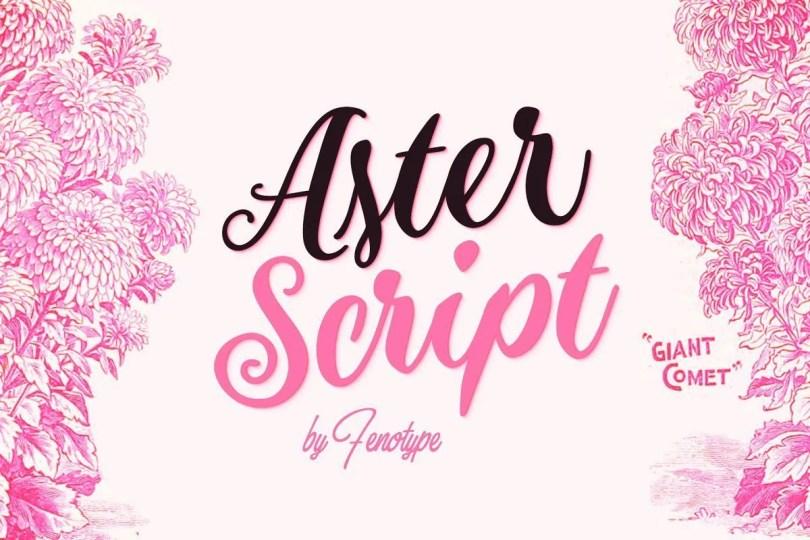 Aster Script [1 Font]   The Fonts Master