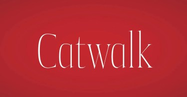 Catwalk [4 Fonts]