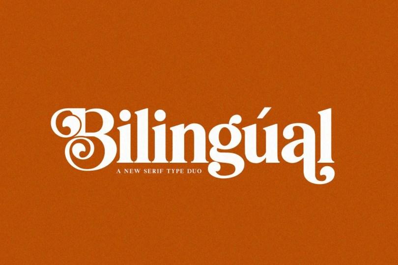 Bilingual Serif Duo [2 Fonts]