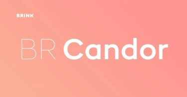 BR Candor Super Family [16 Fonts]