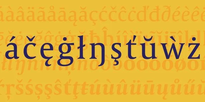 Capitolium 2 Super Family [19 Fonts]