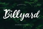 Billyard [1 Font] | The Fonts Master