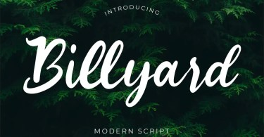 Billyard [1 Font]