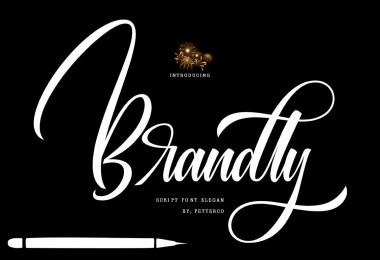 Brandly [1 Font]