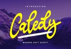 Caledy [1 Font] | The Fonts Master