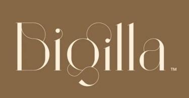 Bigilla [2 Fonts] | The Fonts Master