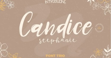 Candice [5 Fonts] | The Fonts Master