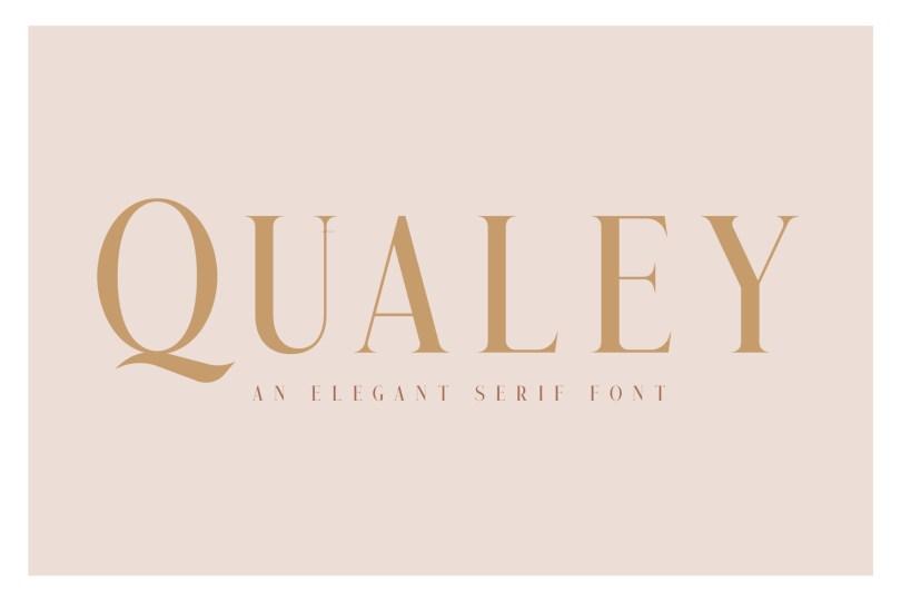 Qualey [2 Fonts] | The Fonts Master