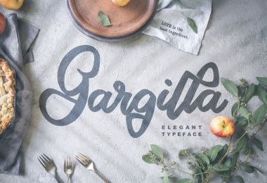 Gargilla [1 Font]   The Fonts Master