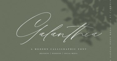 Galanthia [1 Font] | The Fonts Master