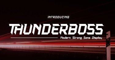 Thunderboss [2 Fonts] | The Fonts Master
