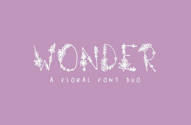 Wonder [1 Font] | The Fonts Master