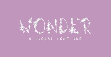 Wonder [1 Font] | The Fonts Master