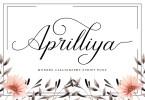 Aprilliya [1 Font] | The Fonts Master