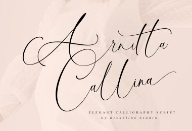 Arnitta Callina [1 Font]   The Fonts Master