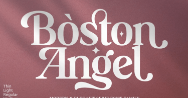 Boston Angel [8 Fonts] | The Fonts Master