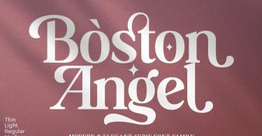 Boston Angel [8 Fonts] | The Fonts Master