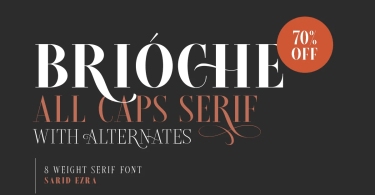 Brioche [8 Fonts] | The Fonts Master
