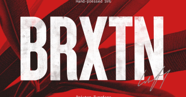 Brixton [4 Fonts] | The Fonts Master