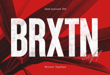 Brixton [4 Fonts] | The Fonts Master
