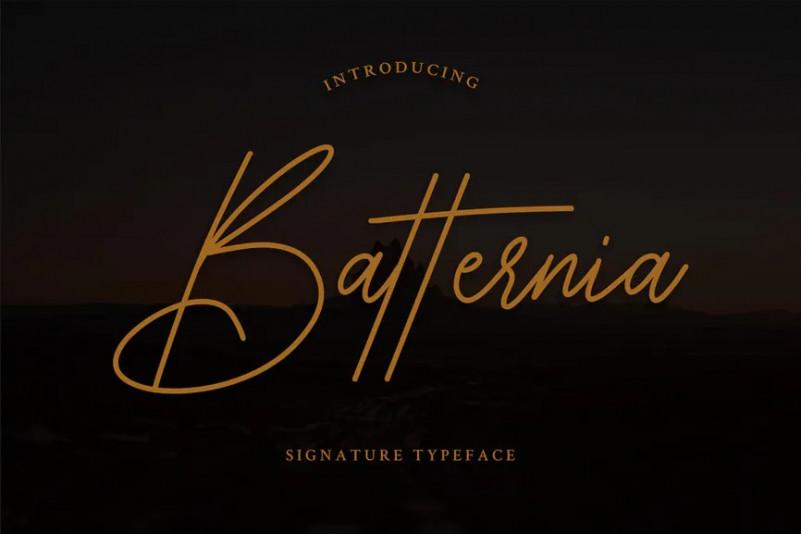 Batternia [1 Font] | The Fonts Master
