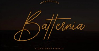 Batternia [1 Font] | The Fonts Master