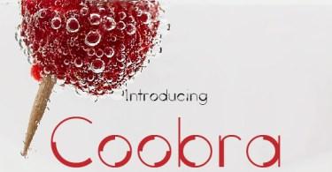 Coobra [2 Fonts] | The Fonts Master