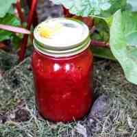 A jar of rhubarb jam sitting in a rhubarb patch.