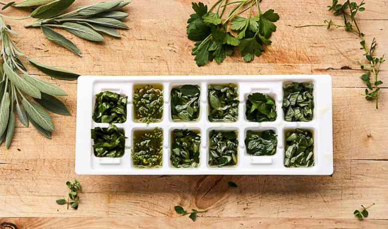 Preserving Fresh Herbs - Herb Cubes to Freeze