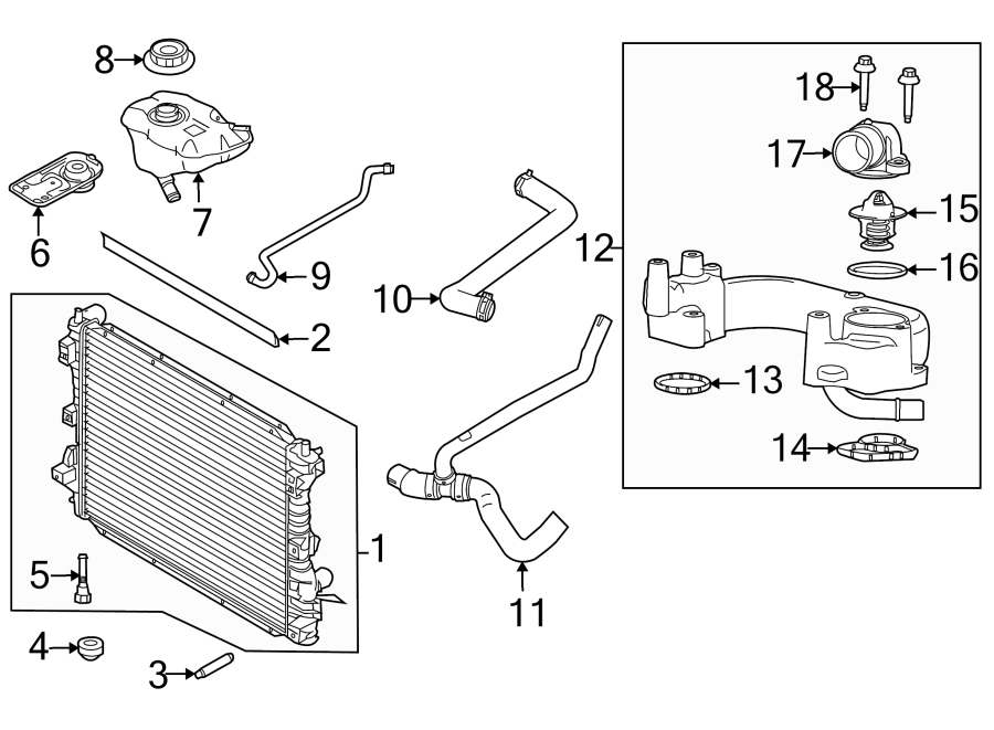 Ford Mustang Radiator Coolant Hose (Lower). 4.6 LITER