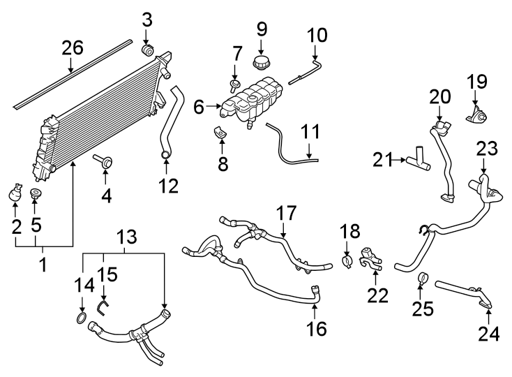 Ford Expedition Radiator Coolant Hose (Lower). Towing
