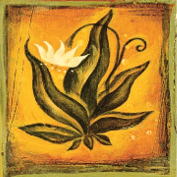 the four agreements official website