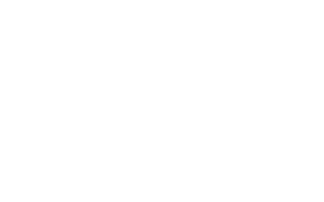 whole wheat bread spread with peanut butter and topped with fruit (blueberries)