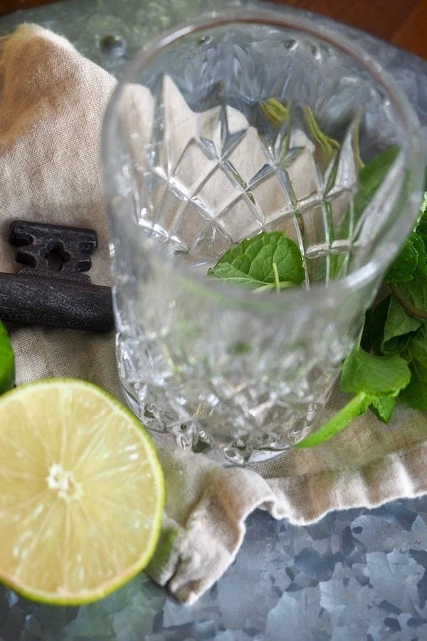 Cocktail Glass, with mint leaves, lime half | www.thefreshcooky.com
