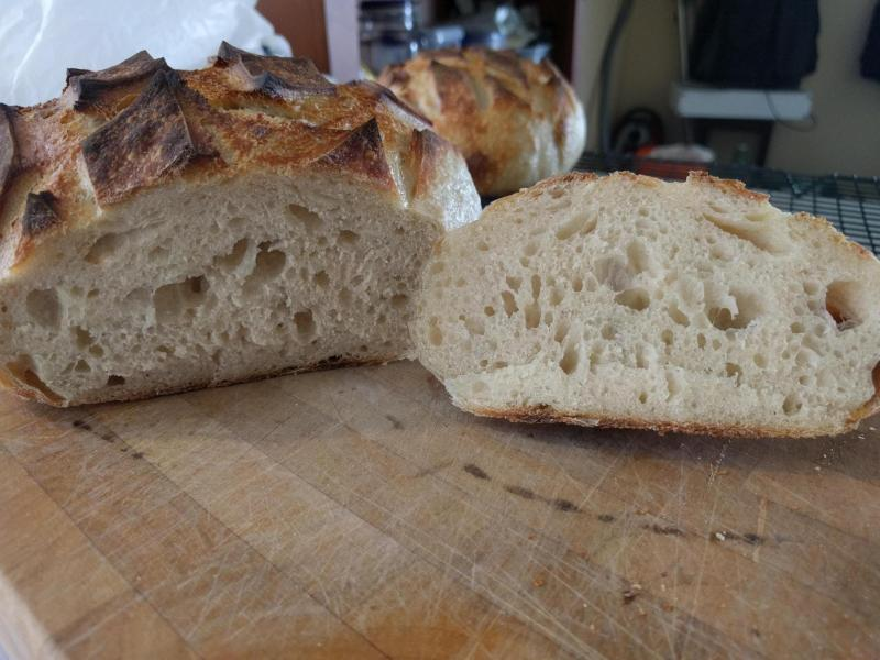 SF Sourdough Crumb