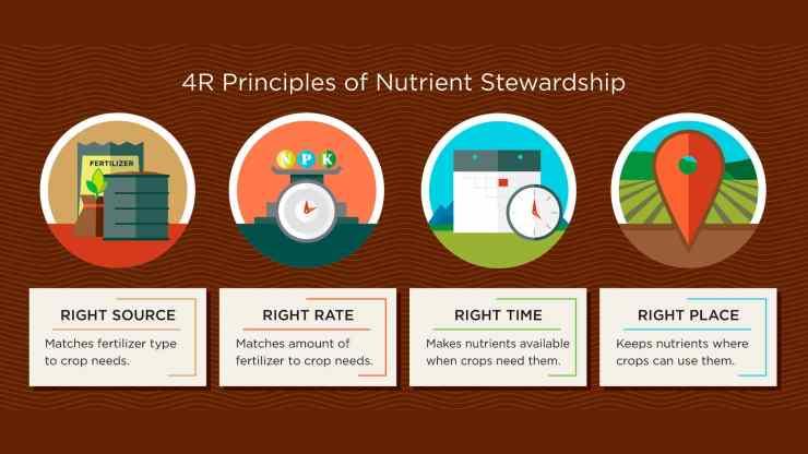 4-Principles