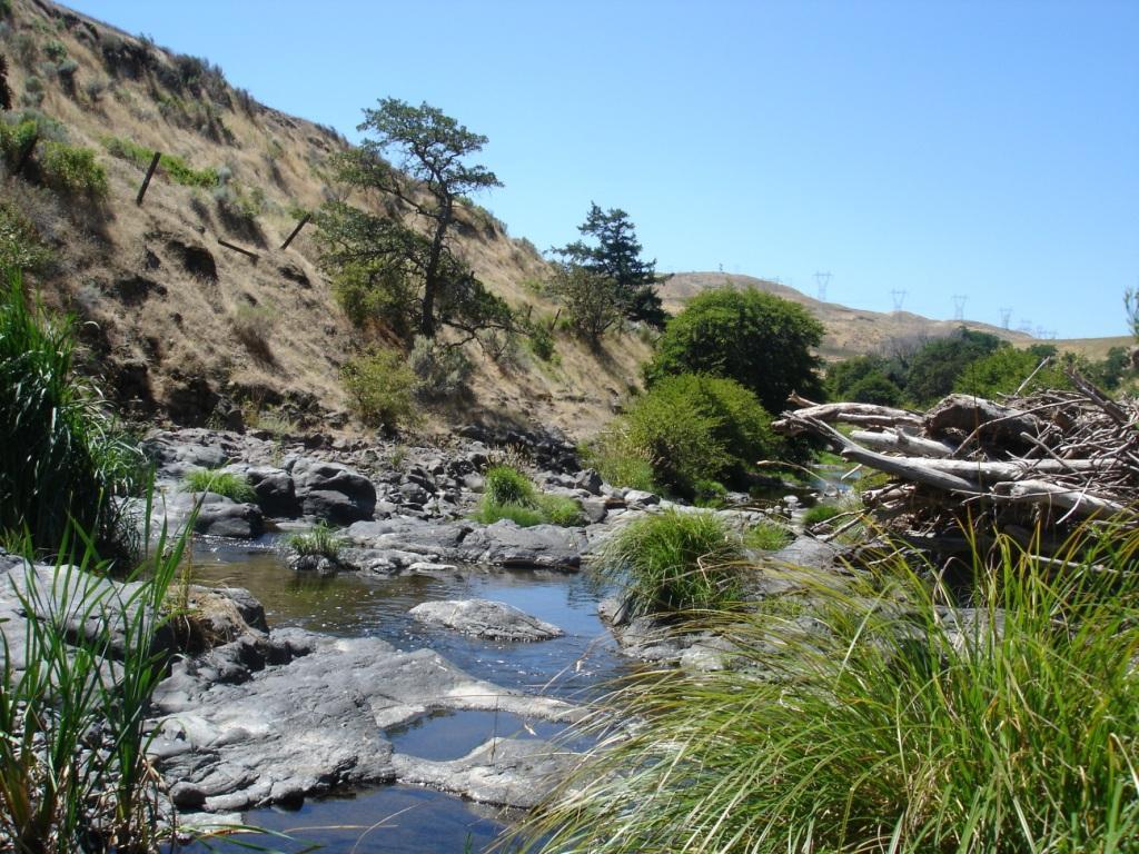 Fifteenmile Creek