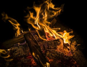 Starting the FIRE: How to Retire Early