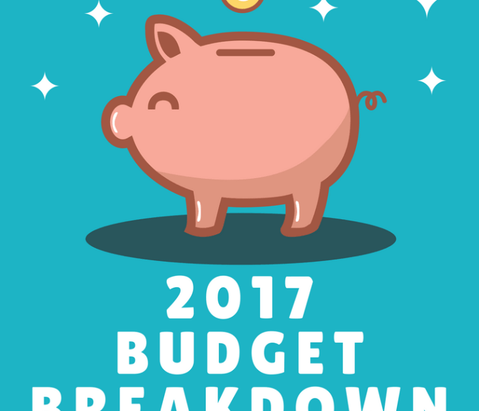 Family Income Report 2017 – {January to April}