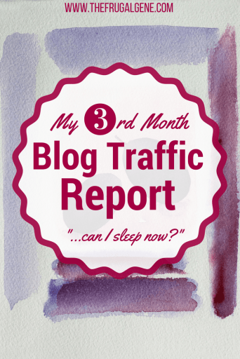 July Monthly Blogging Report (3rd Month)