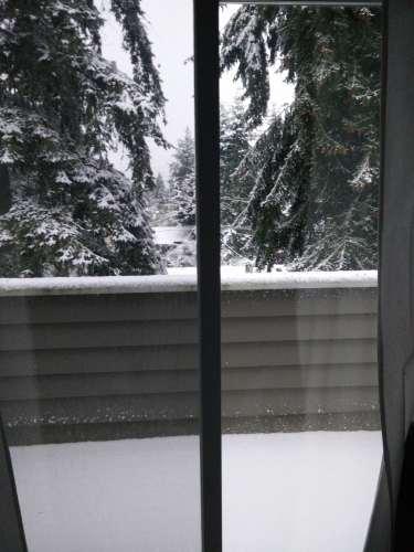 snow-in-seattle